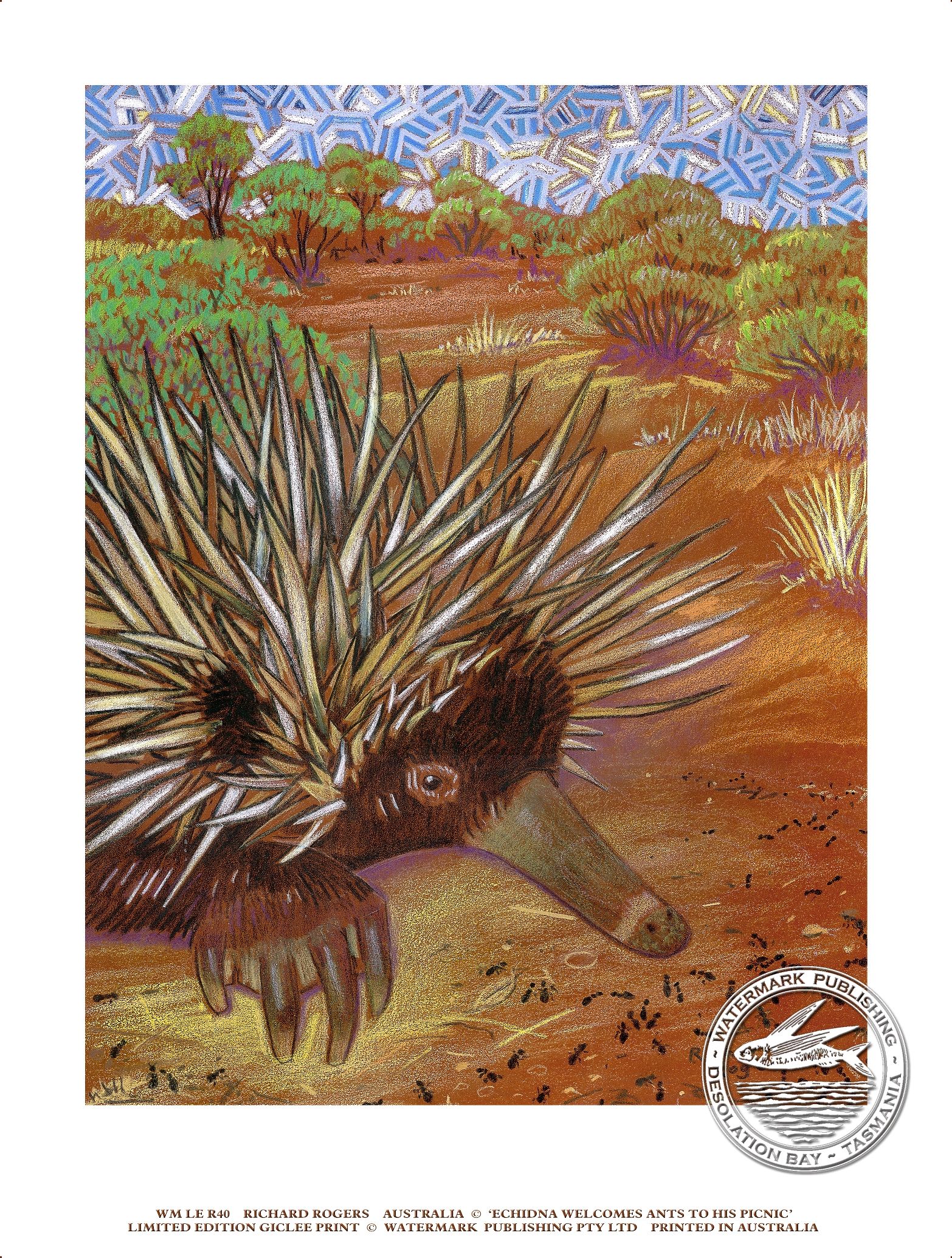 Echidna 2 Greeting Card Art Room