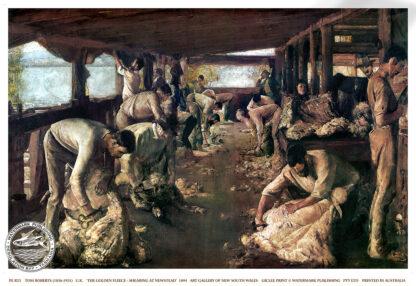 shearing newstead